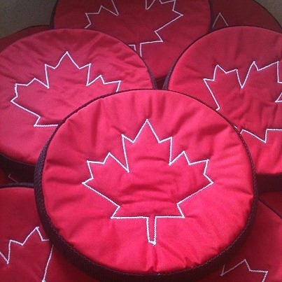 custom-made-canadian-frizzer-for-team-canada-dog-agility-squad