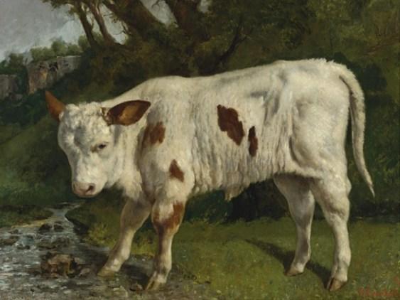 Le Veau Blanc, Gustave Courbet