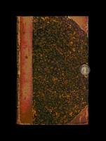 """""""Libro de Gastón"""" (mayo de 2008). Ejemplar único. Colección private."""