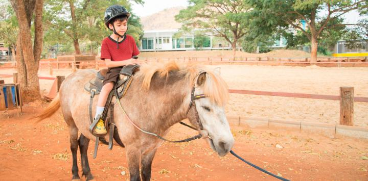 Rhythmic Breathing in Equine Therapy