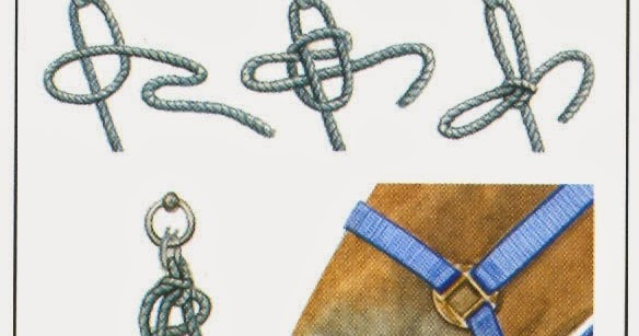 Safety knot to tie a horse