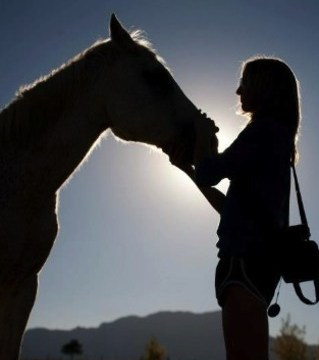 Equinetherapy and music