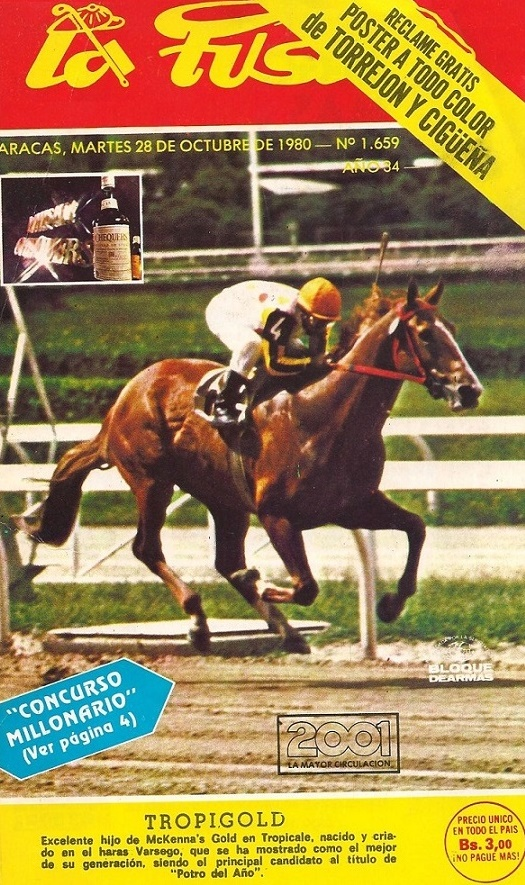 Tropigold on the cover of a horse magazine