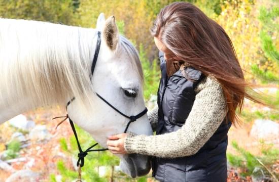 Equine Behaviour - Stimulate the horse