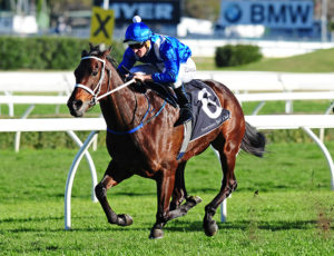 Hugh Bowman and the mare Winx