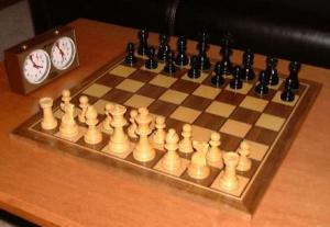 Chess Set, horse in chess