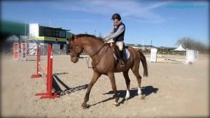 Equitación - Salto de Obstáculos