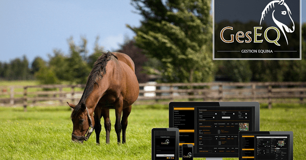 GesEQ App for Horse Health and Wellness