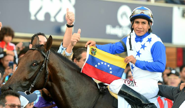The Venezuelan horse The Brother Slew with the rider Paco López in the Caribbean Classic