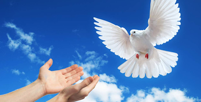 World Peace Day - January 1st