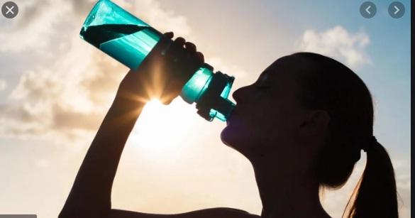 hidratación en el deporte ecuestre
