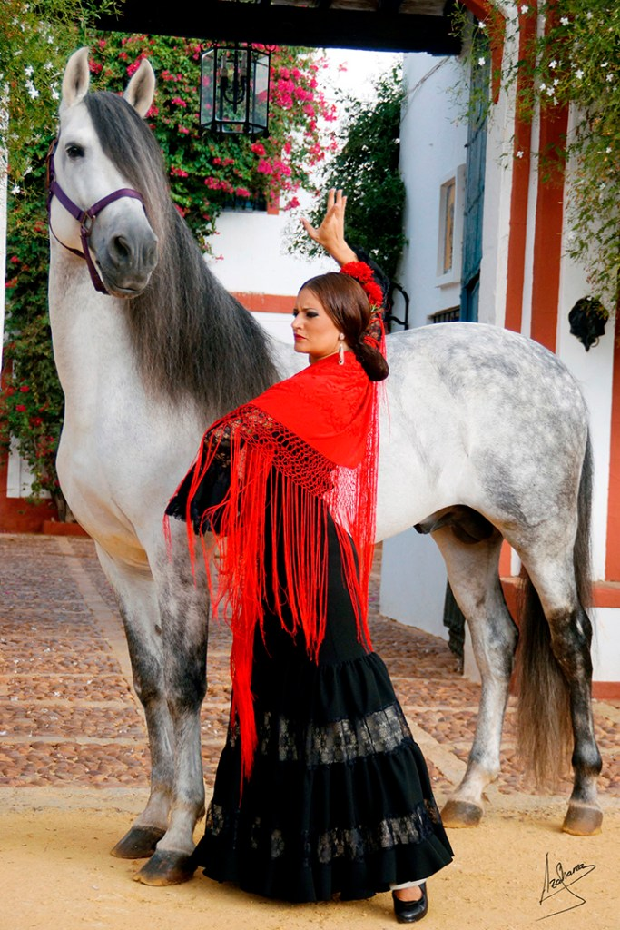 Spain, Horses and Gustavo Mirabal