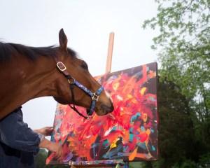 Gustavo Mirabal admires horse intelligence - Horse is painting