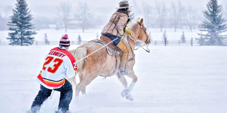 An equestrian winter sport