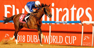 Dubai World Cup - Equine Passion