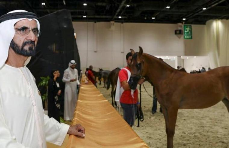 Sheikh Mohammed bin Rashid, vice president and ruler of Dubai and the horses