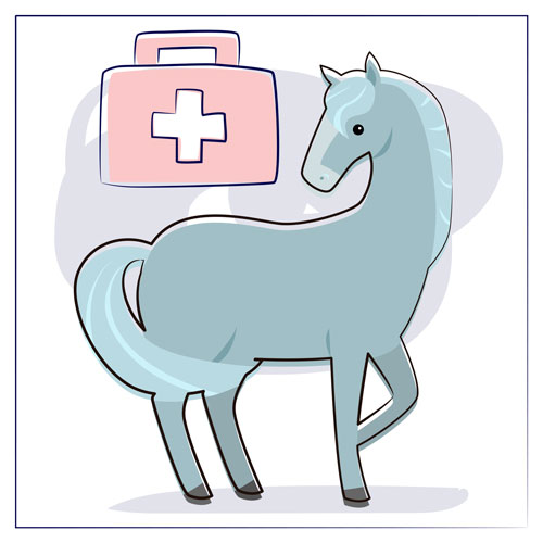 First aid kit for horses