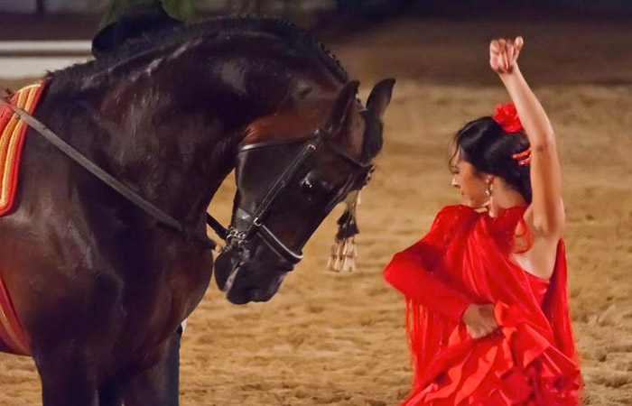 "Equine show ""Passion and Goblin of the Andalusian Horse"""