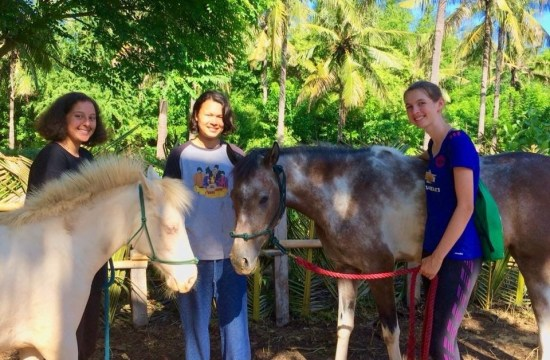 Estair Robbin and her friends were doing Equestrian Volunteering in Gili, Indonesia