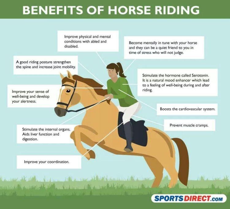 Benefits of horseback riding Infograph