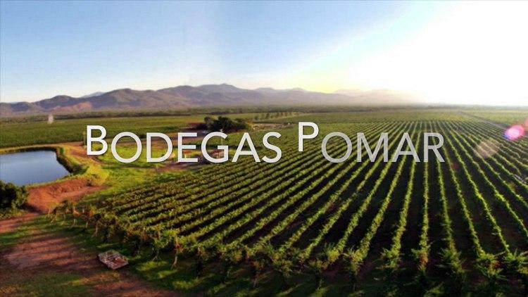 Bodegas Pomar - Los viñedos visitados por Gustavo Mirabal