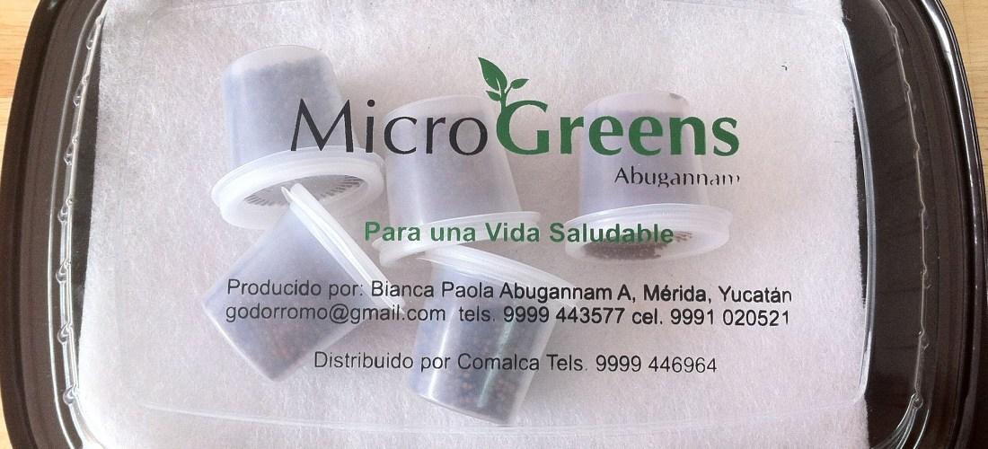 """Ya esta a la venta """"Primer Kit para sembrar tus propios Microgreens sin tierra y semillas orgánicas único en México"""""""