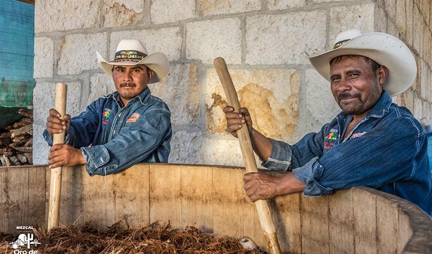 El mezcal, una bebida de origen prehispánico @mezcaloro