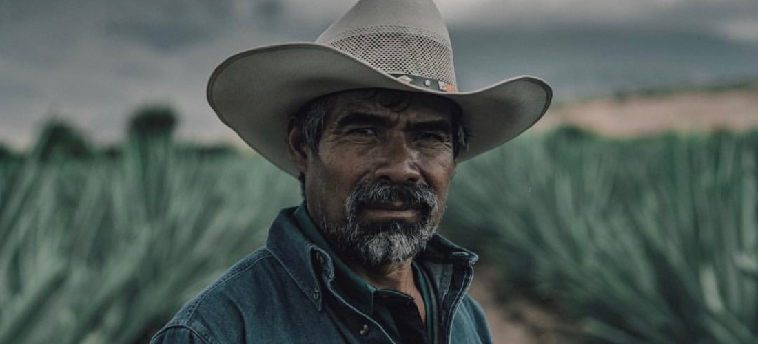 Oaxaca, cuna auténtica de mezcal