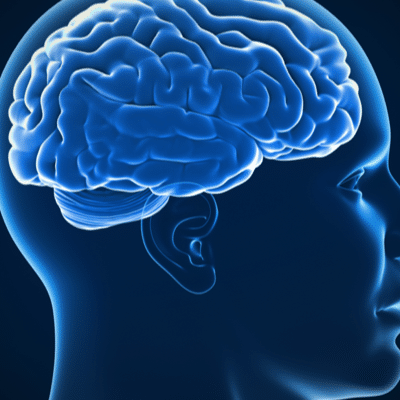 Brain Clearing: Glymphatic System Tune-up and Tonify Program