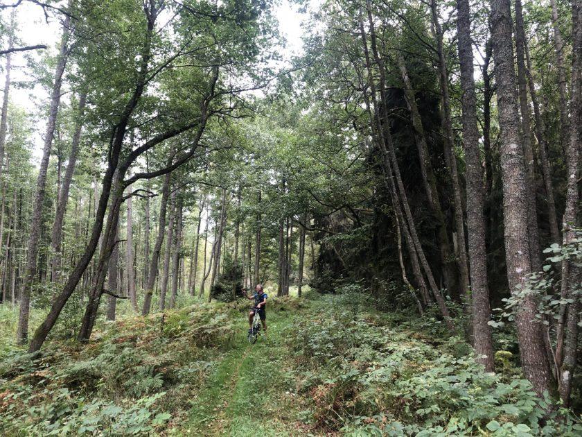 Fahrradtour im Urwald vom Pape Nationalpark