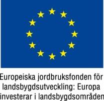 EU-flagga+Europeiska+jordbruksfonden+färg[1]