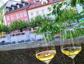 Titelbild Slowenien