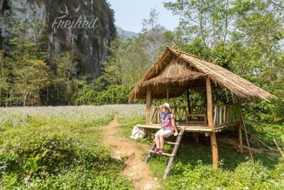 Weg zur Höhle Pha Tok