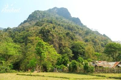 Laotischer Bauernhof im Grünen