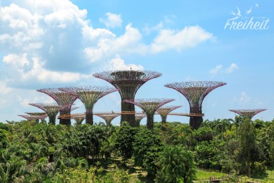 Giant Trees im Gardens by the Bay
