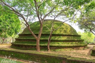 Ein Stupa auf dem Gelände des Alahana Parivena