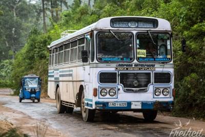 Sri Lanka hat unglaublich viele Busse, die auch die kleinsten Orte miteinander verbinden
