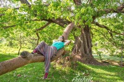 Ein Ast so dick wie ein Baumstamm ;-)