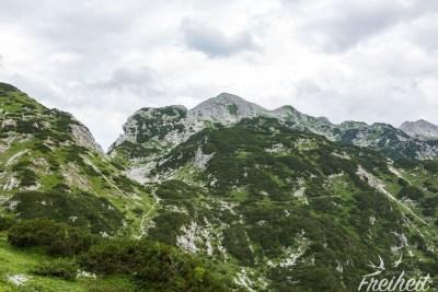 Blick zurück zum Gipfel des Vogel (Bildmitte)