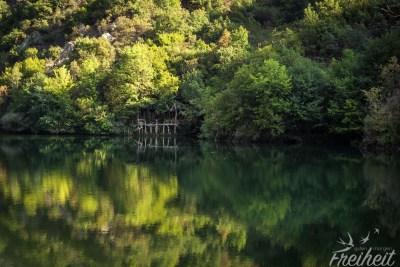Die Bäume verschmelzen mit der Spiegelung im Wasser :)