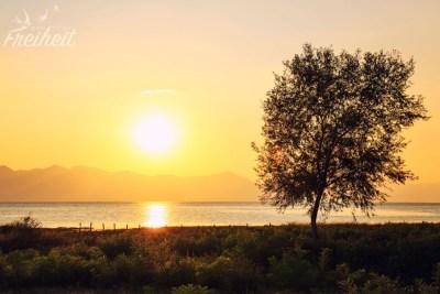 Sonnenuntergang am Skutari See