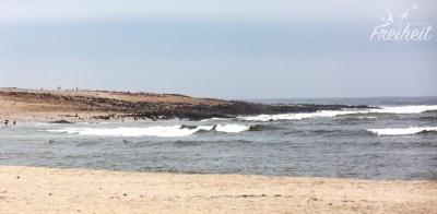 Cape Cross - gut besucht von den Robben