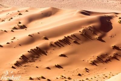 Licht und Schatten in der Namib