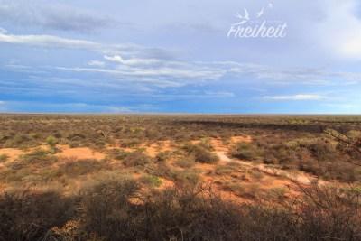 Ausläufer der Kalahari Wüste
