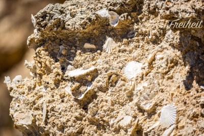 Das Algar Seco besteht aus Muschelkalk