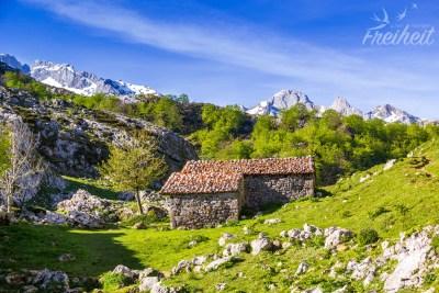 Romantischer Platz für eine Hütte (zumindest im Sommer!)
