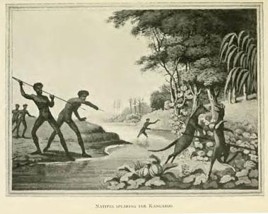 Natives spearing the kangaroo