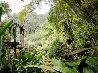 Die Gärten von Xilitla