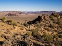 Hiking im Joshua Tree National Park