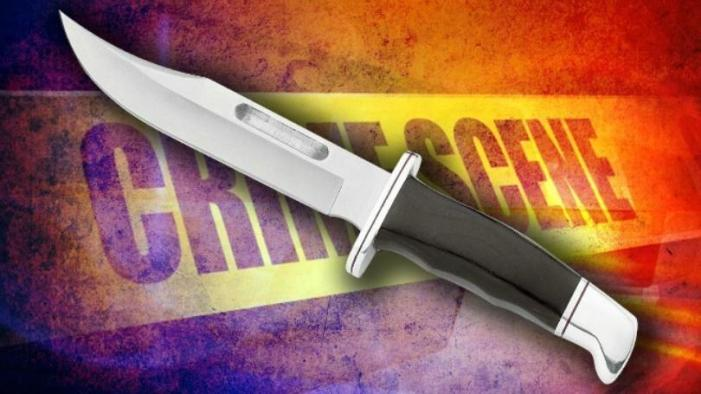 Woman stabs husband; assaults two police officers